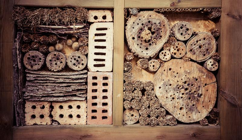 Insecthotel in tuin stock foto
