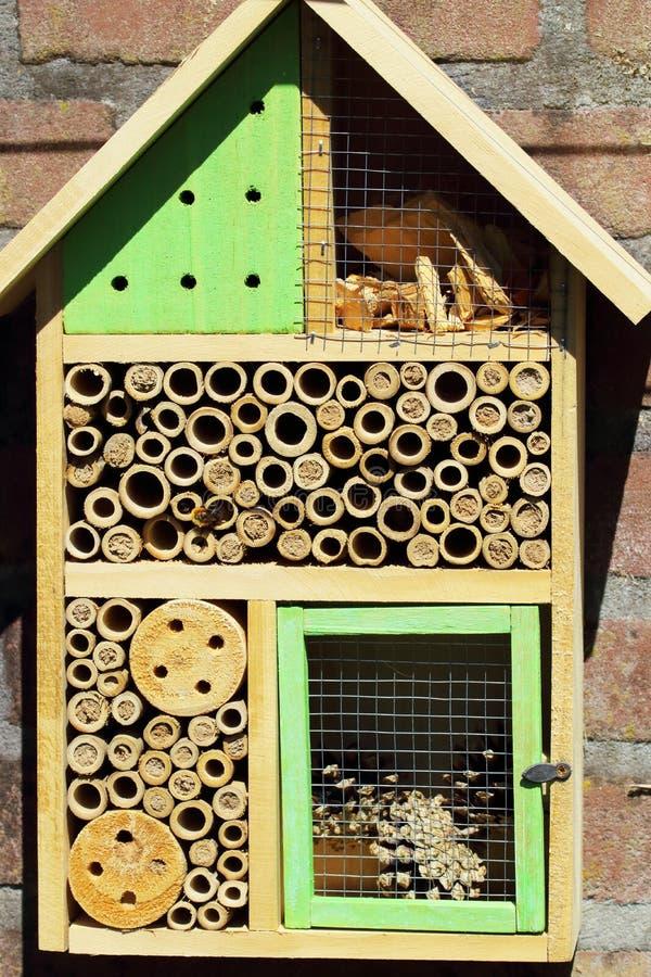 Insecthotel voor solitaire bijen stock afbeeldingen