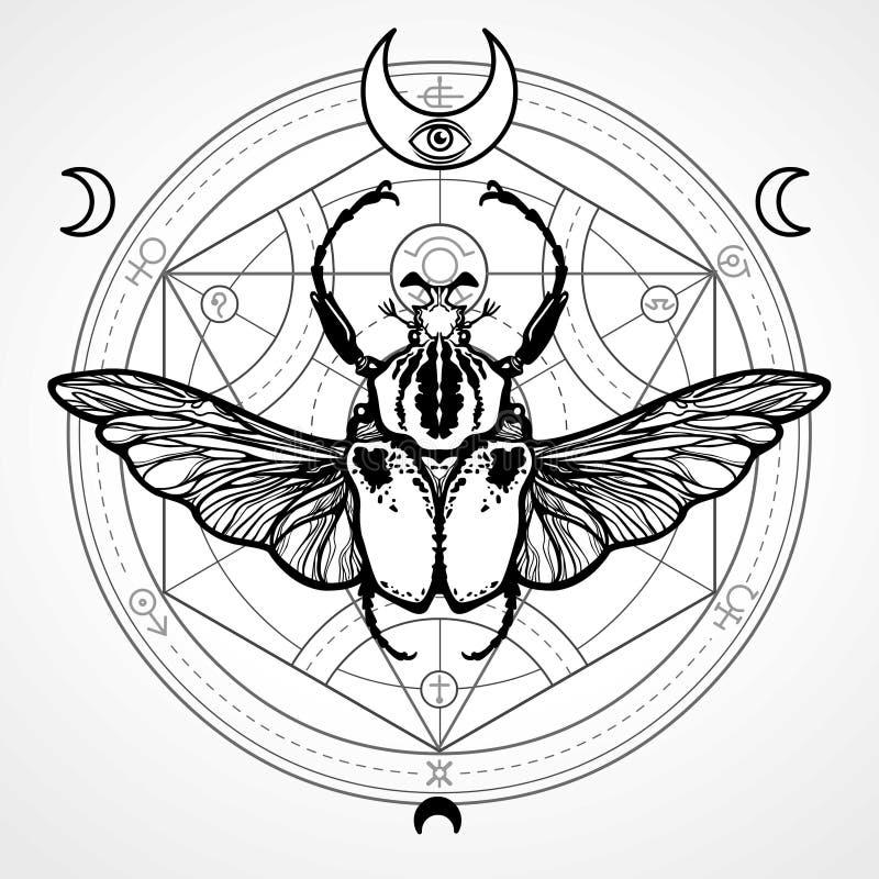 Insecto con alas Círculo místico ilustración del vector