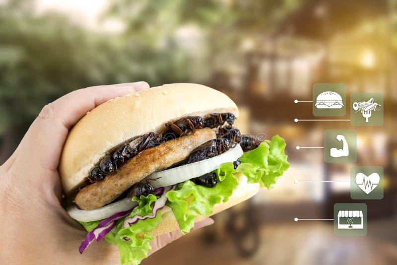 Insecto de los grillos para comer como alimentos hechos de insecto cocinado en hamburguesa en la mano de la mujer con la nutrició fotos de archivo libres de regalías