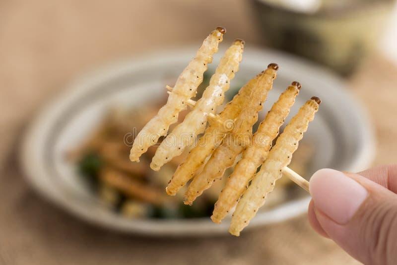 Insectos de la comida: El insecto de bambú de Caterpillar del gusano de la tenencia de la mano de la mujer frió curruscante para  imagen de archivo