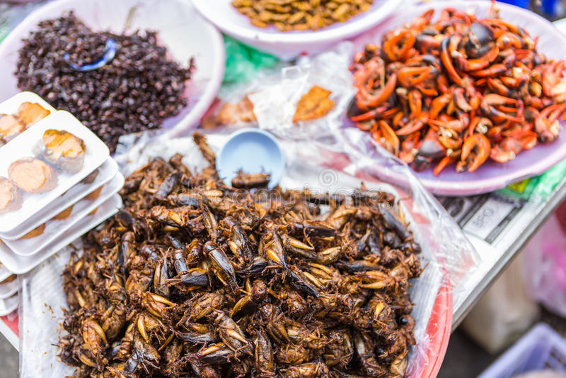 Insectos extraños fritos del gusto de las comidas imágenes de archivo libres de regalías