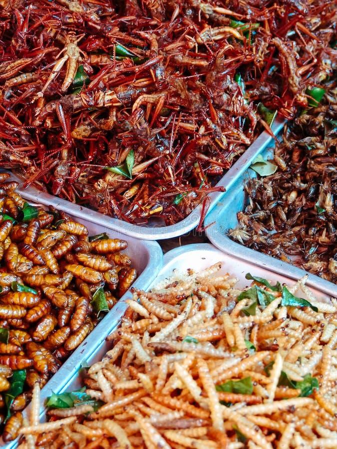 Insectos fritos en las paradas de la comida de la calle de Asia foto de archivo libre de regalías
