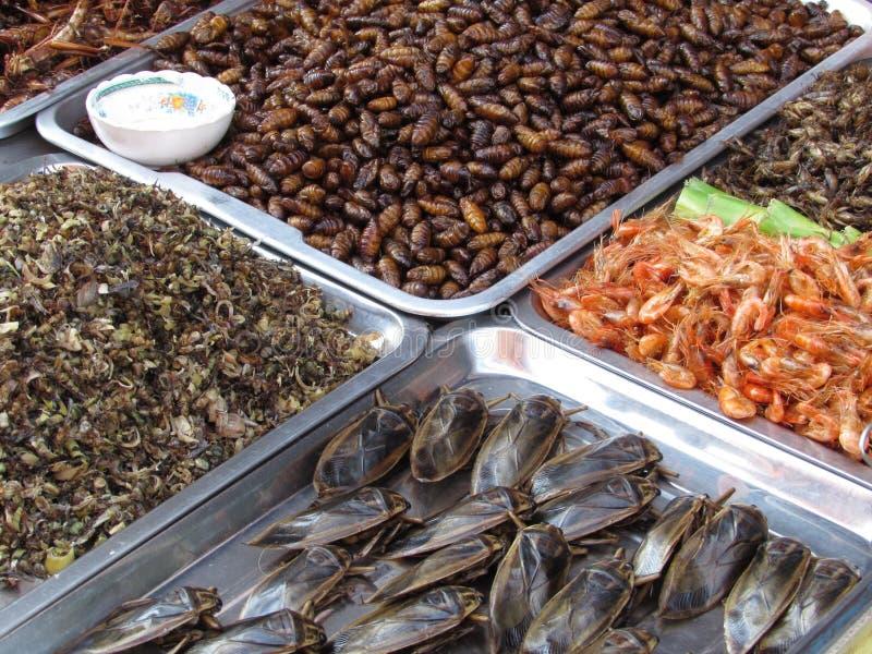 Insectos para comer Pattaya Tailandia imagenes de archivo