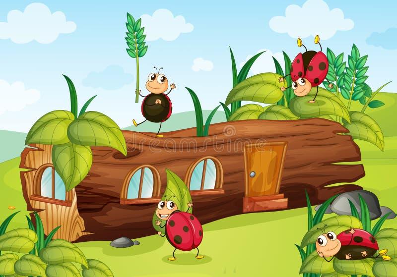 Insectos y casa ilustración del vector