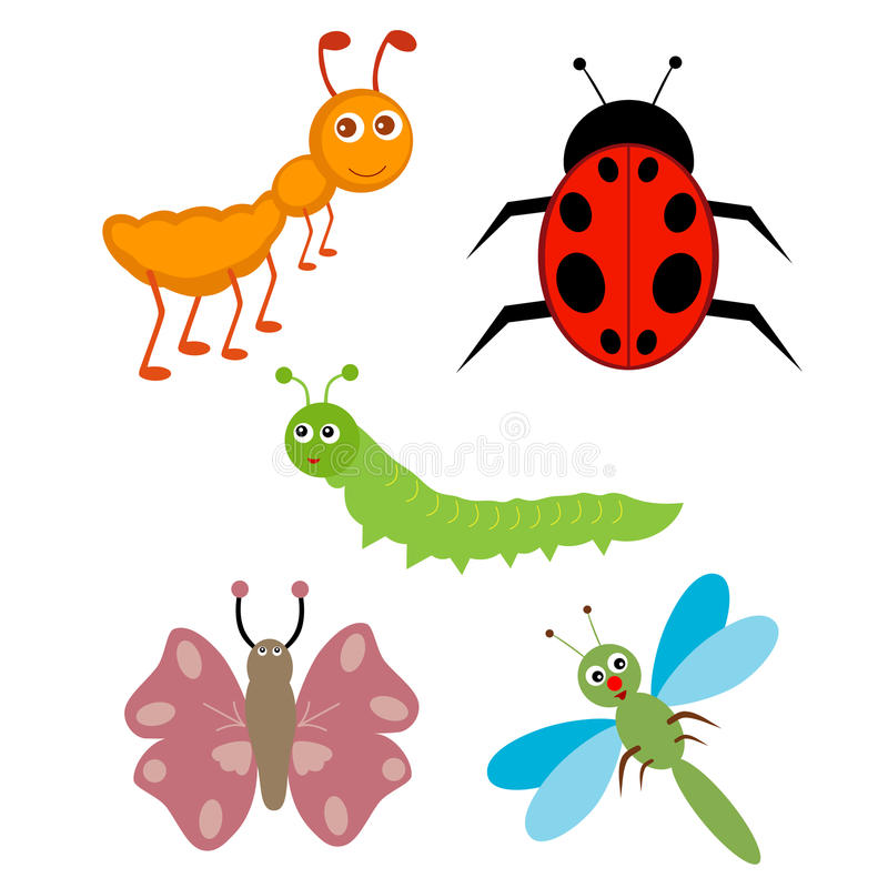 Download Insects stock vector. Illustration of dragonfly, vector - 25613340