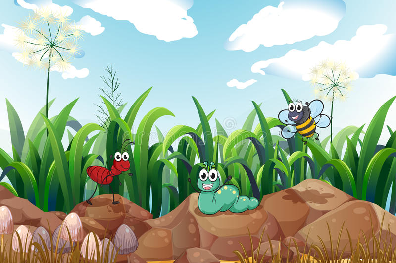 Insects above the rocks stock illustration