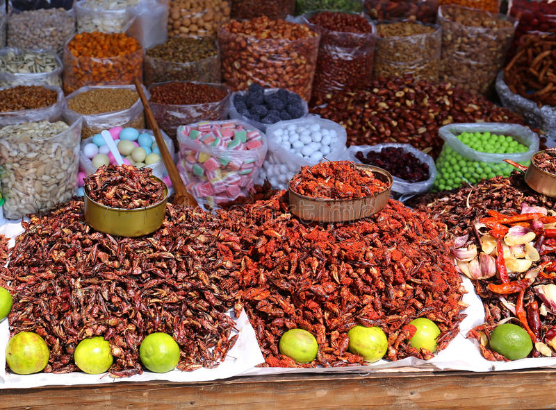 Insects Food in Mexico. Insects on a market, a Snack, in Oaxaca, Mexico royalty free stock photo