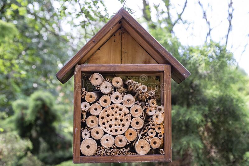Insects hotel house protection shelter, made of wood royalty free stock image