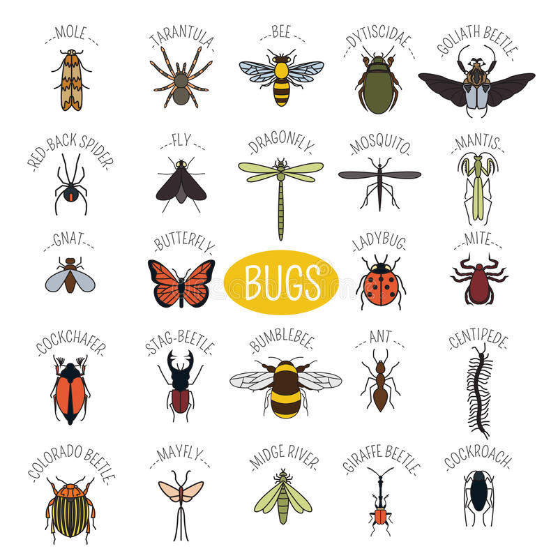 Free Insects Icon Flat Style. 24 Pieces In Set. Colour Version Stock Image - 64149951