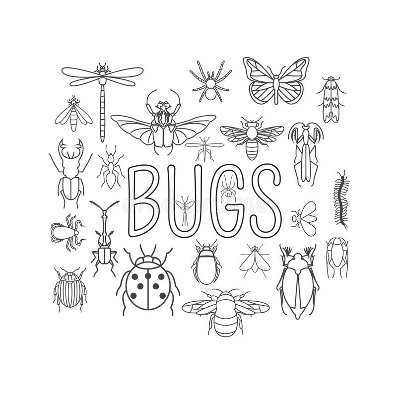 Free Insects Icon Flat Style. 24 Pieces In Set. Outline Version Royalty Free Stock Photo - 64150135