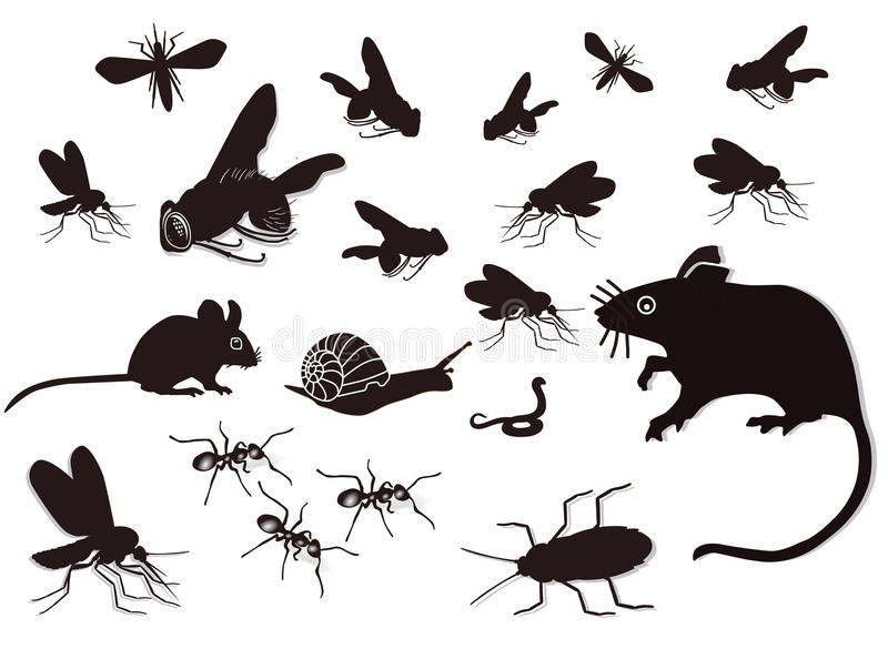 Insects and rodents. Black and white illustration of multiple bugs, snake and vermin stock illustration