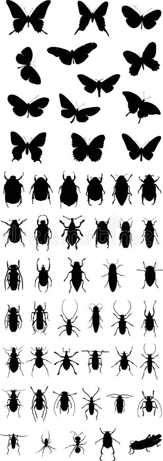 Free Insects Silhouette 1 (+ Vector) Royalty Free Stock Photo - 10147825