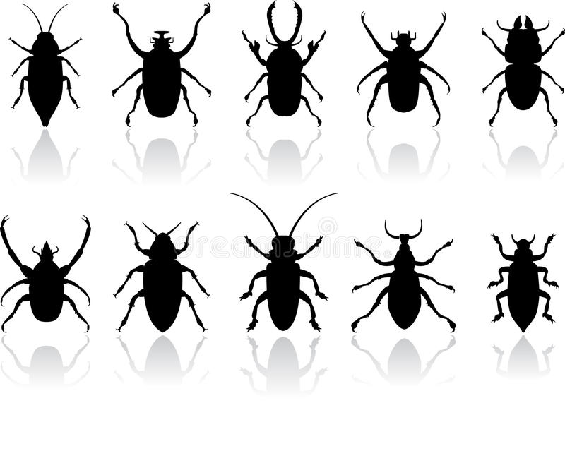 Download Insects silhouettes set stock illustration. Image of spider - 12393679