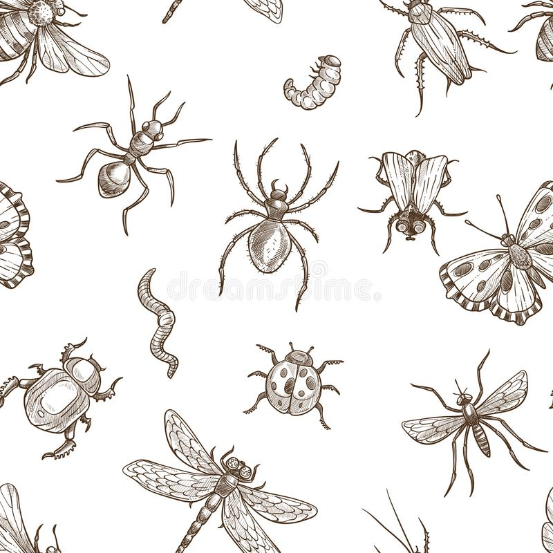 Free Insects That Fly And Creep Monochrome Sepia Sketches Seamless Pattern. Stock Photos - 131889743