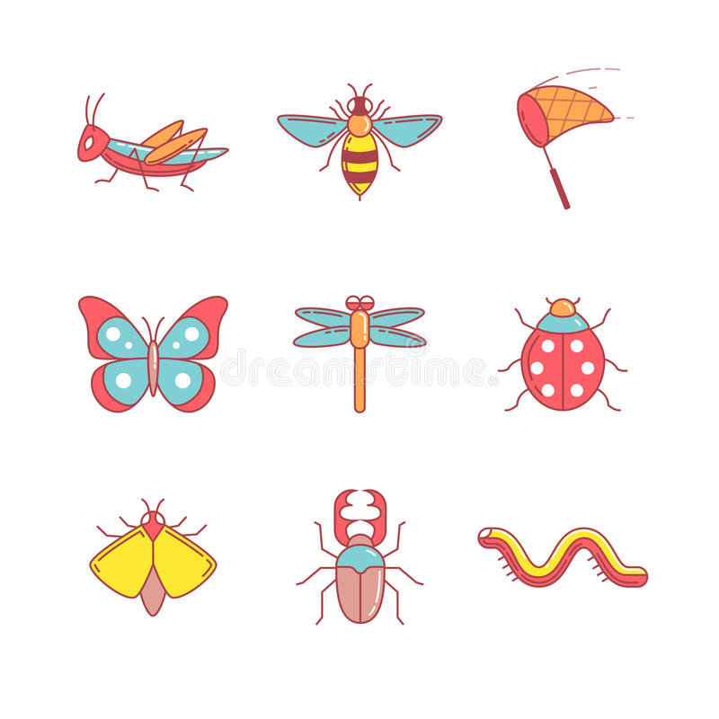 Insects thin line icons set. Modern flat style symbols isolated on white for infographics or web use stock illustration