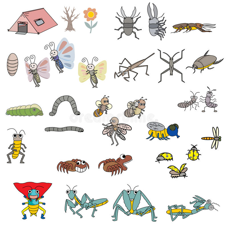 Insects vector. Insects more action vector on white bg stock illustration