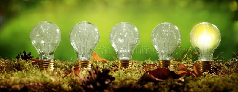 Insegna di panorama con una fila delle lampadine fotografia stock libera da diritti