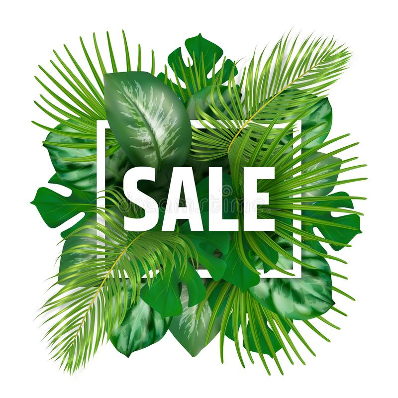Download Insegna Di Vendita Di Estate Con Le Foglie Tropicali Illustrazione Vettoriale - Illustrazione di background, composizione: 117980803