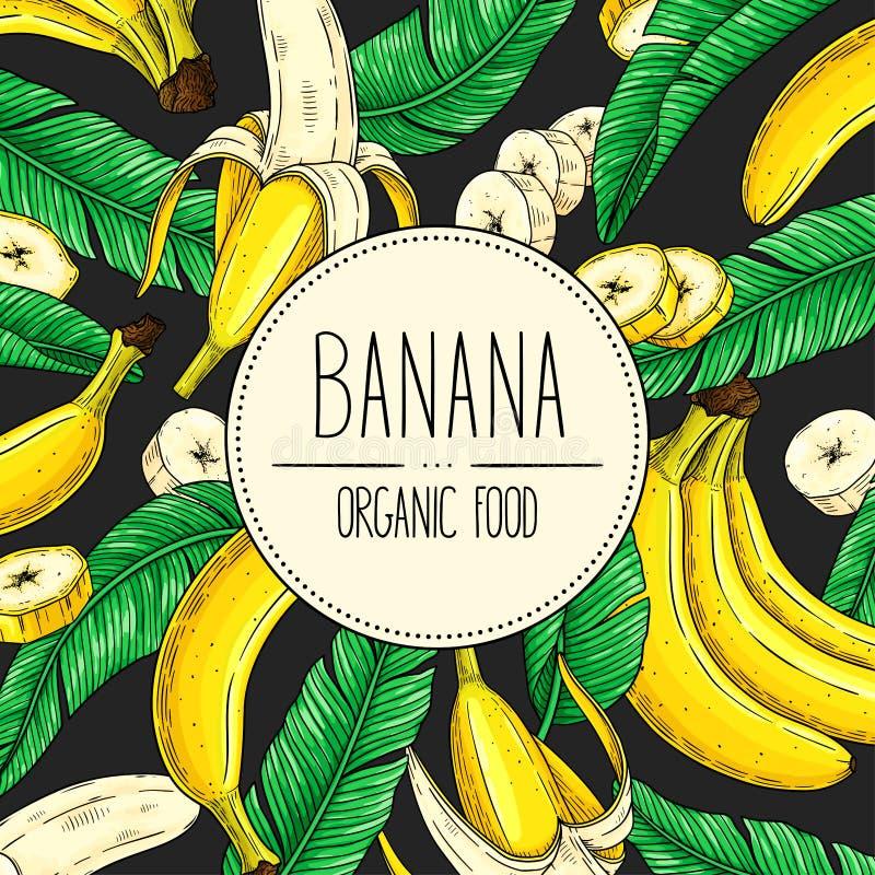 Insegna disegnata a mano di vettore con la banana, i pezzi delle fette, il mazzo e le foglie illustrazione vettoriale