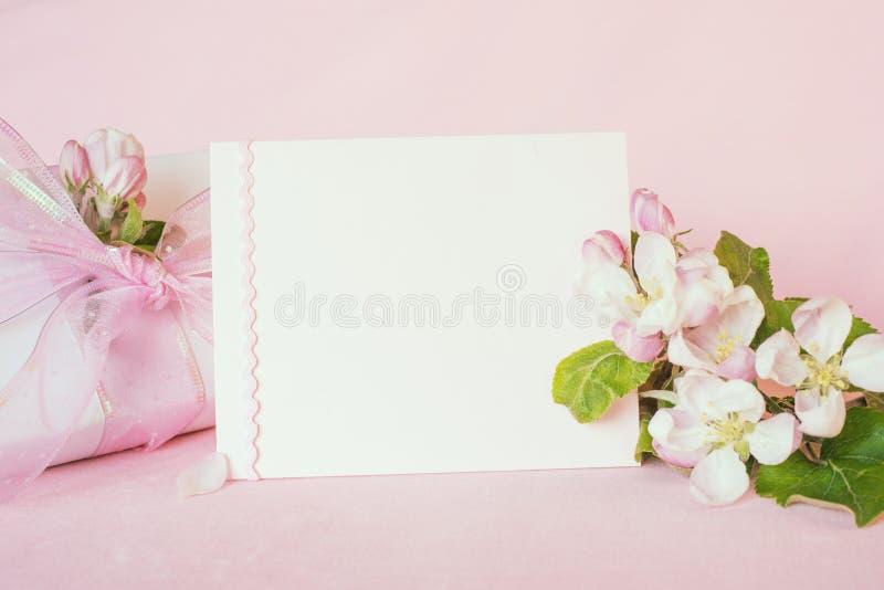 Insegna rosa pastello graziosa con la carta in bianco e fiori freschi della mela della molla con il regalo avvolto per il giorno  fotografia stock libera da diritti