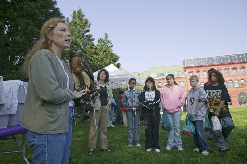 Insegnante con il falco sul suo braccio che parla agli allievi fotografia stock libera da diritti