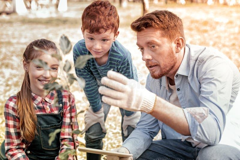 Insegnante serio con i guanti bianchi d'uso del giardino della barba fotografia stock libera da diritti