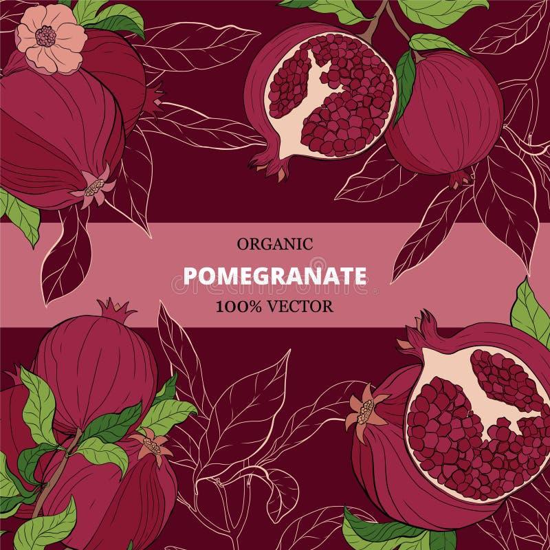 insegne con i frutti del melograno sul fondo di Borgogna illustrazione di stock