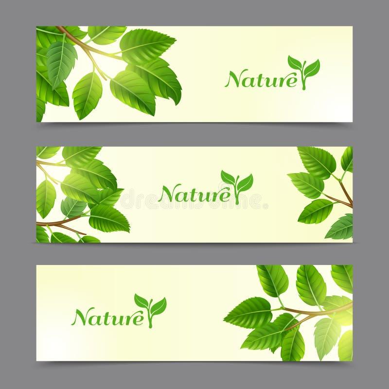 Insegne di eco delle foglie verdi messe royalty illustrazione gratis