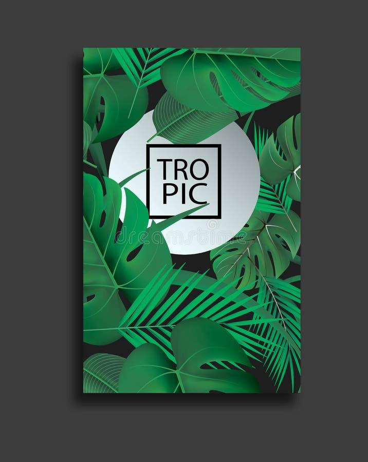 Insegne di vettore messe con le foglie tropicali verdi su fondo nero Progettazione botanica esotica per i cosmetici, stazione ter illustrazione vettoriale
