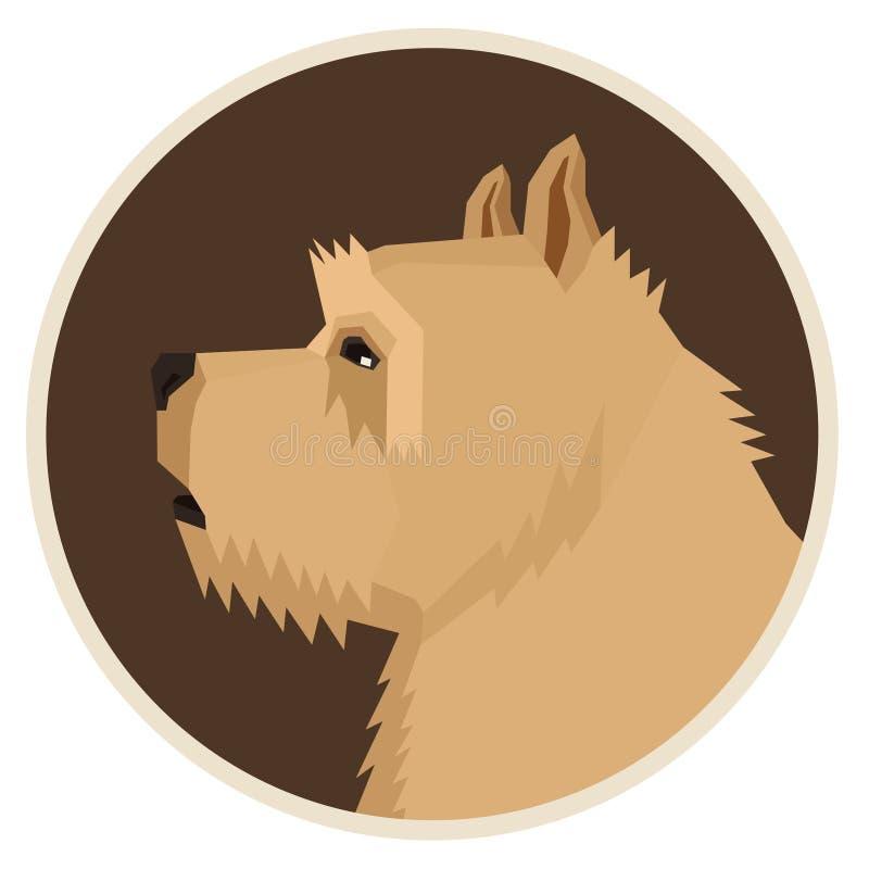 Insegua l'icona geometrica dell'avatar di stile di Norwich Terrier della raccolta rotonda illustrazione vettoriale