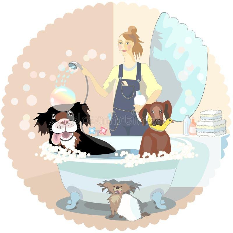 Insegue il pulitore illustrazione di stock
