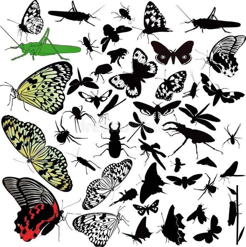 Insektów zwierzęta motyli ilustracja wektor