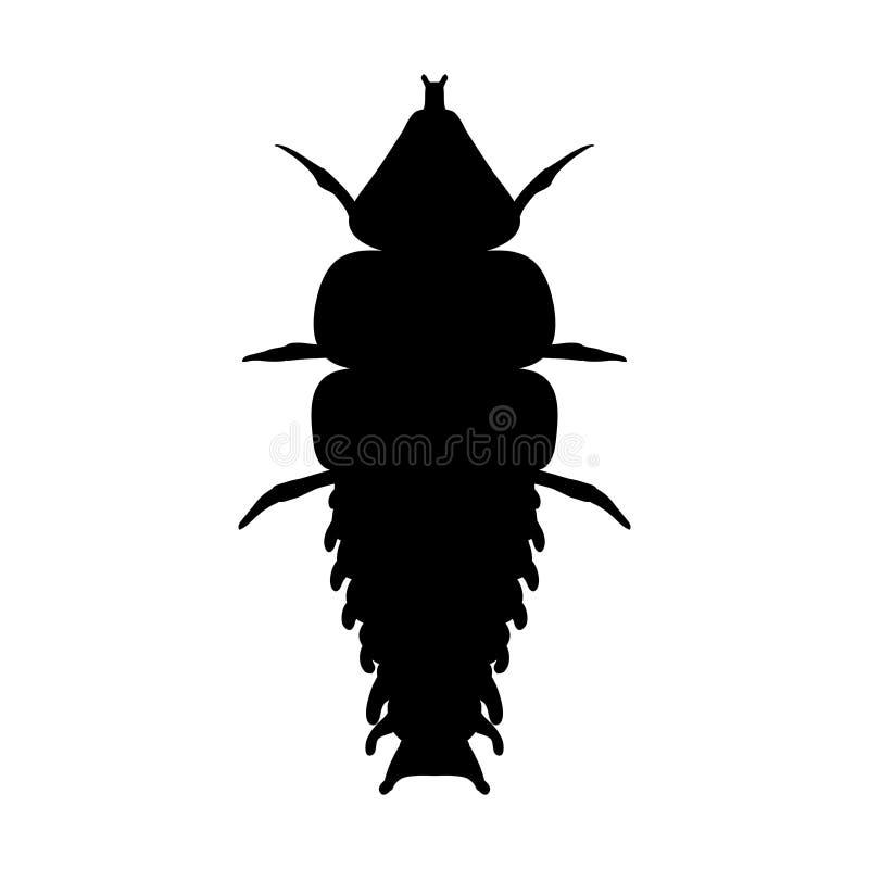 Insekt w magnifier Trylobit ściga Duliticola Platerodrilus Nakreślenie trylobit ściga Trylobit ścigi projekt dla ilustracji