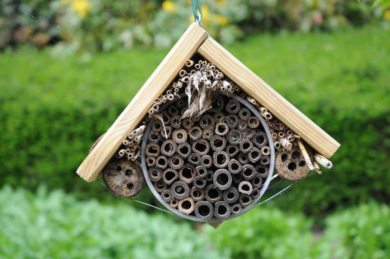 Insekta hotel zdjęcie royalty free
