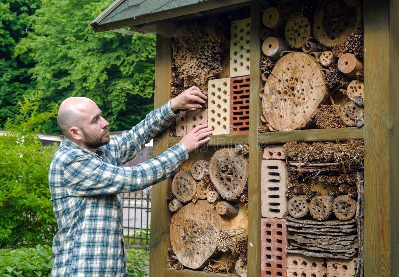 Insekta hotel w ogródzie obraz royalty free