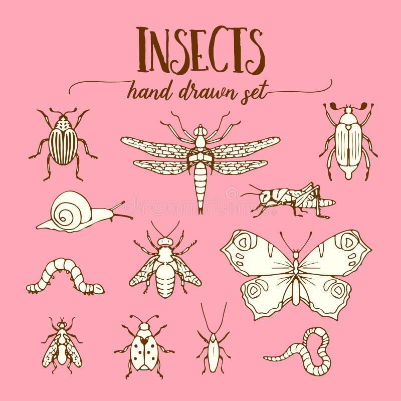 Insekta rocznik ustawiający ręka rysujący doodle nakreślenie ilustracja wektor