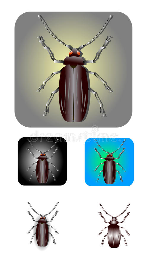 insekta wektor ilustracja wektor