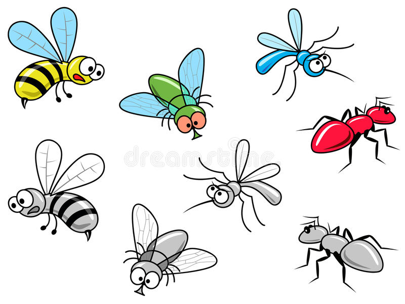 Insekten lizenzfreie stockfotos