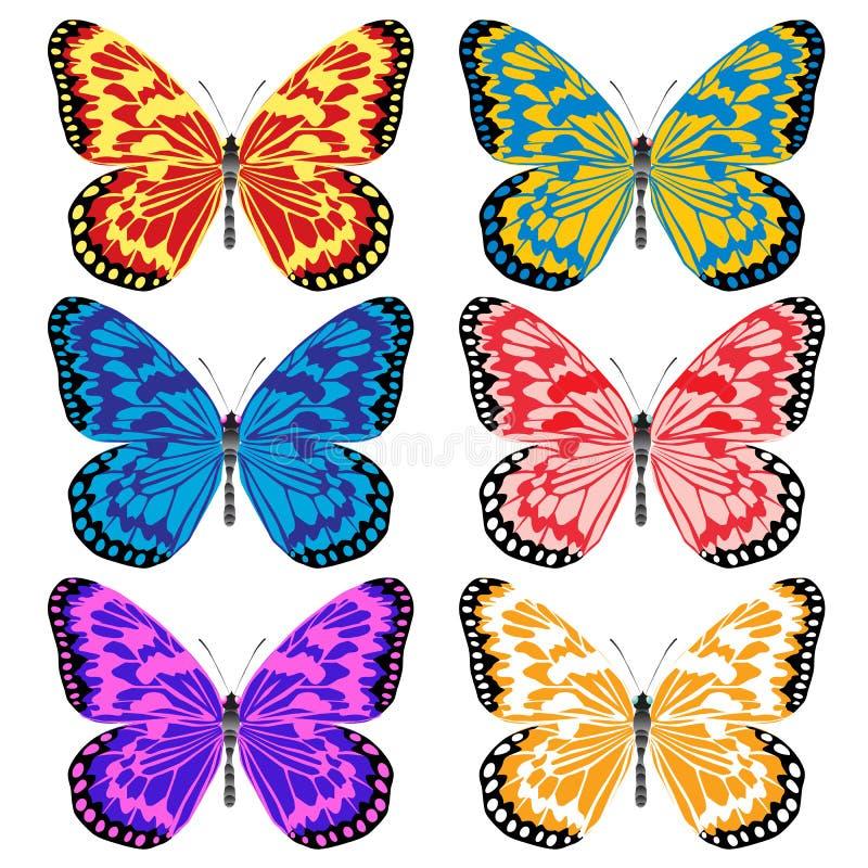 Insekten gefallen mit seinem Auftritt und Farbe stock abbildung