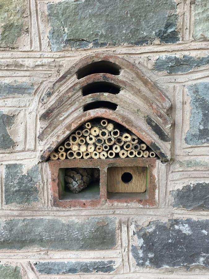 Insekten- und Bienenhaus stockfotos