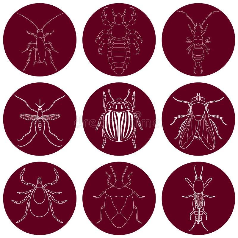 Insektenikonen eingestellt Earwig und ticken Sie, stinken Sie Wanze und Kricket, Fliege und Laus, Kartoffelkäfer und Moskito, lizenzfreie abbildung