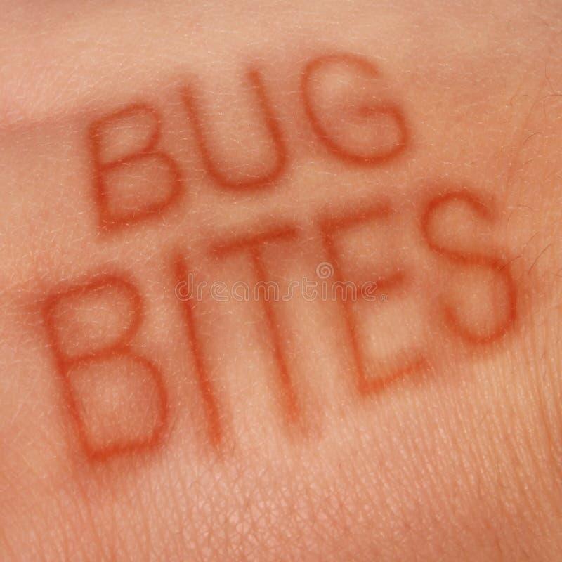 Insektenstiche lizenzfreie abbildung