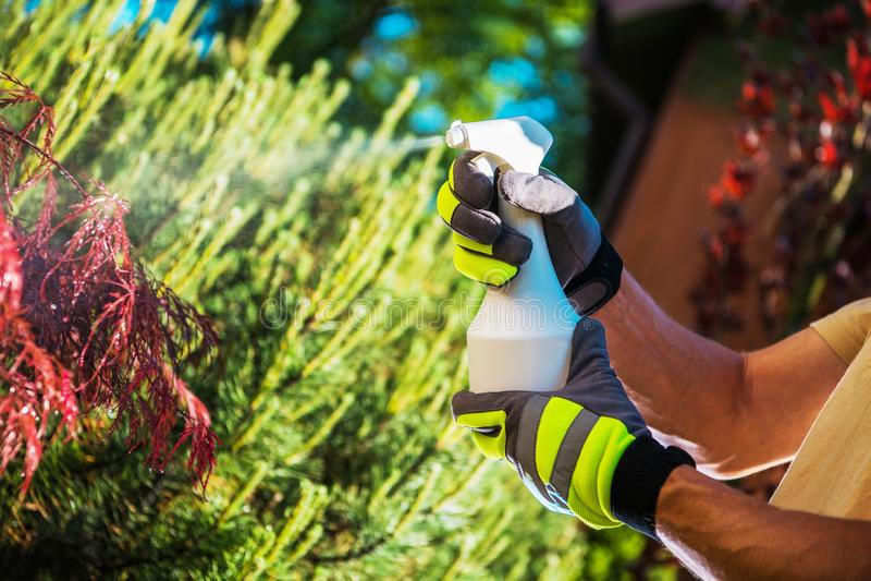 Insektenvertilgungsmittel-Gartenpflanzen lizenzfreie stockfotos