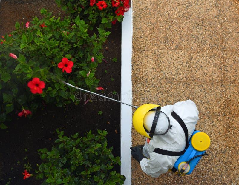 Insektenvertilgungsmittel-Sprühen des Gartens, tragender Schutzanzug des Mannes stockbilder
