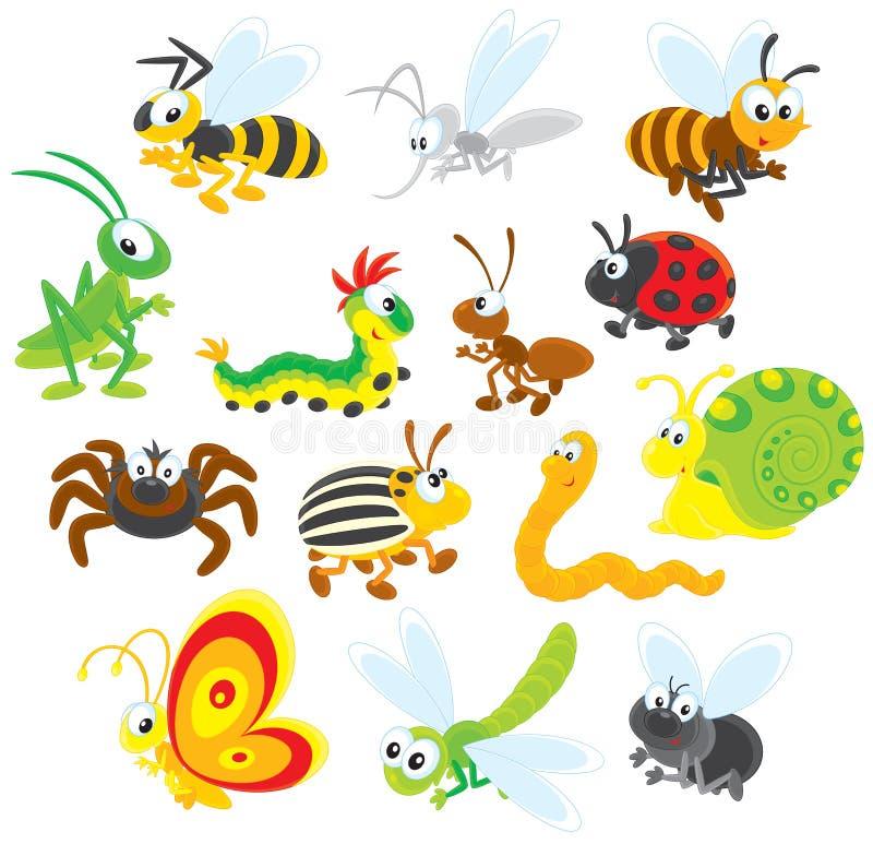 Insekty ilustracji