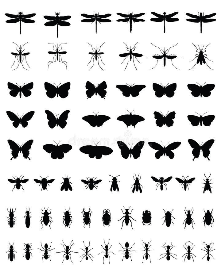 Insekty 2 ilustracja wektor