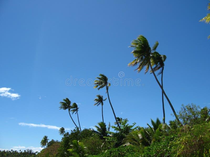 Insel stockfotos