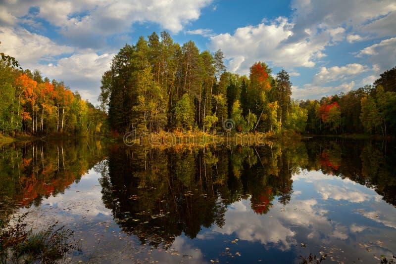 Insel auf dem Waldsee im Herbst stockfotografie