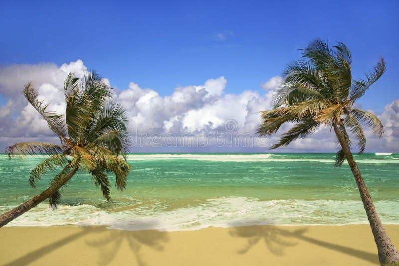 Insel Pardise in Kauai Hawaii lizenzfreies stockbild